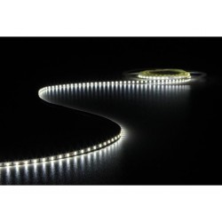 FLEXIBLE LED STRIP - COLD WHITE 6500 K - 600 LEDs - 5 m - 24 V
