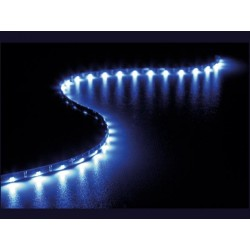 BLUE LED ANGEL EYES LIGHT - 12V