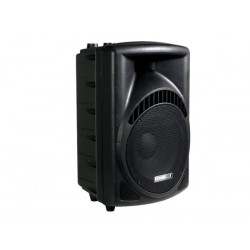"2-WAY PROFESSIONAL 12"" ABS SPEAKER"