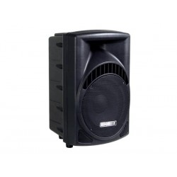 "2-WAY PROFESSIONAL 10"" ABS SPEAKER"