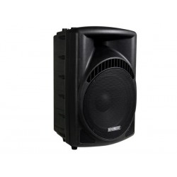 "2-WAY PROFESSIONAL 15"" ABS SPEAKER"