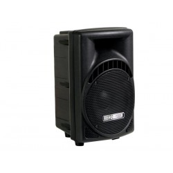"2-WAY PROFESSIONAL 8"" ABS SPEAKER"